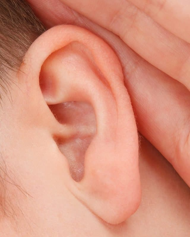 good hearing is important for many musicians