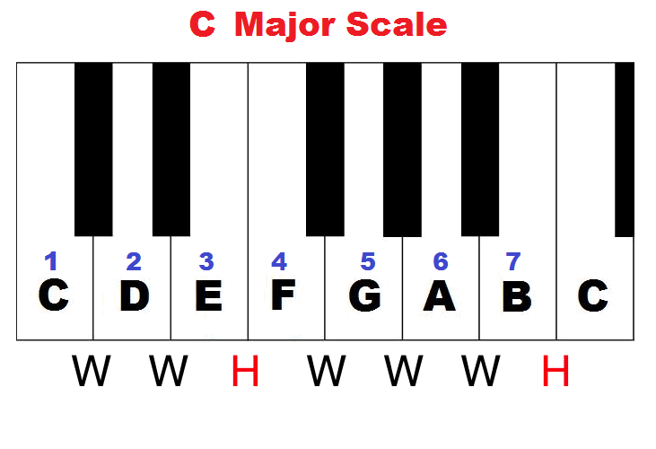 C Major Scale Steps